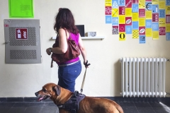Impression mit Hund