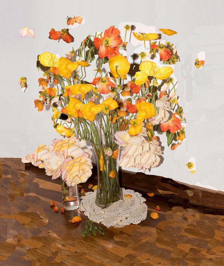 Nico Krijno, Blumen von meinem Bruder