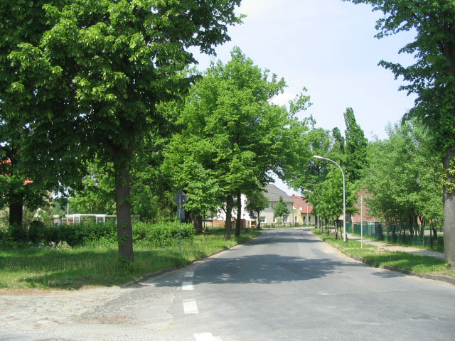 strasse_in_selchow